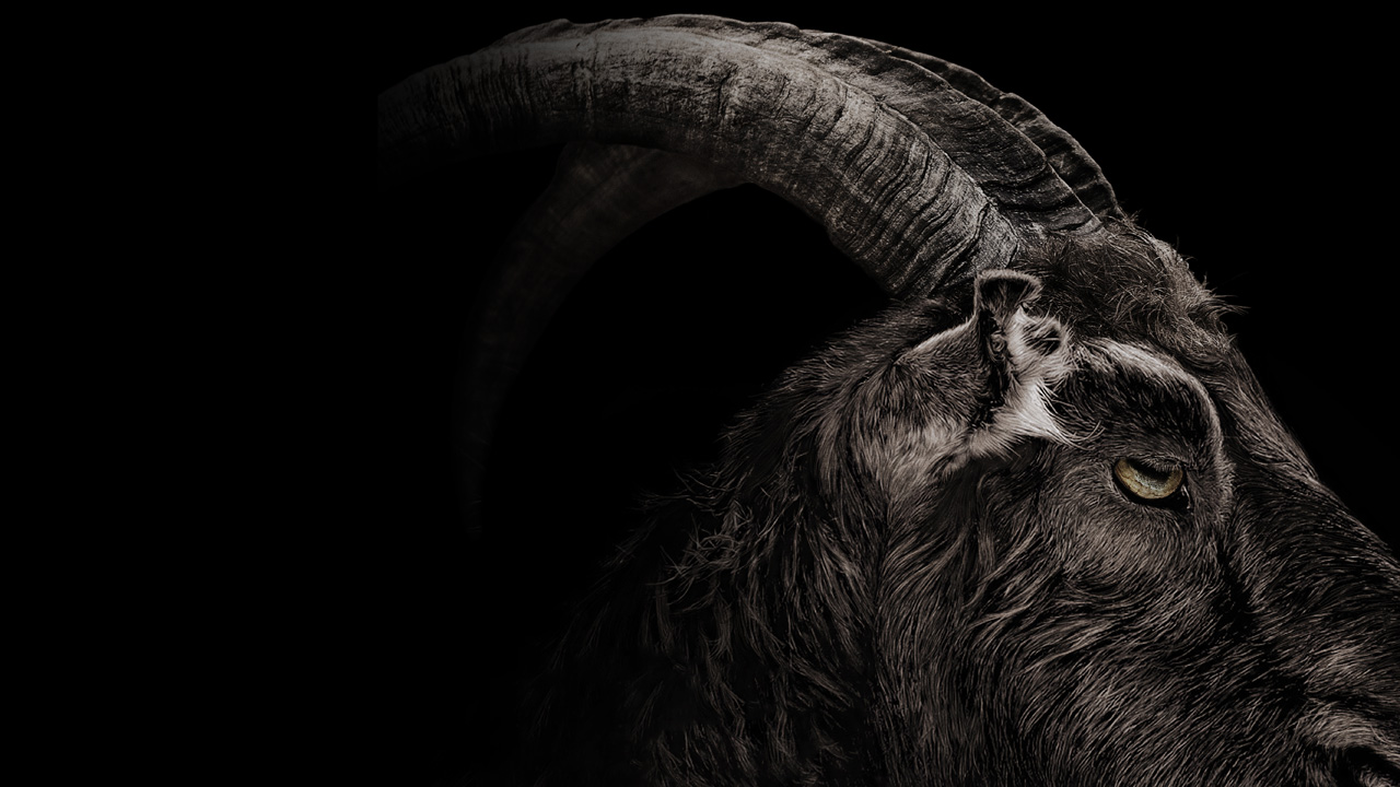 Black Phillip Exemplifies the Haunting Mystique of Goats